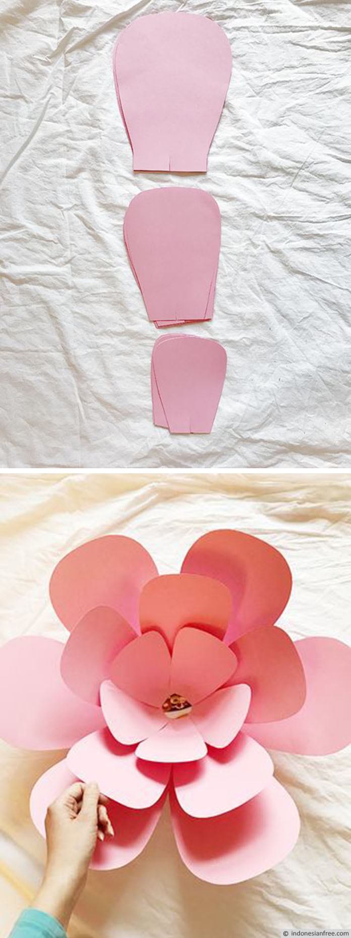 Cara Membuat Bunga Raksasa 3d Untuk Dekorasi Dinding Rumah Kamu