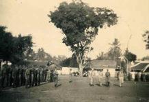 asal usul dan sejarah kota pemalang