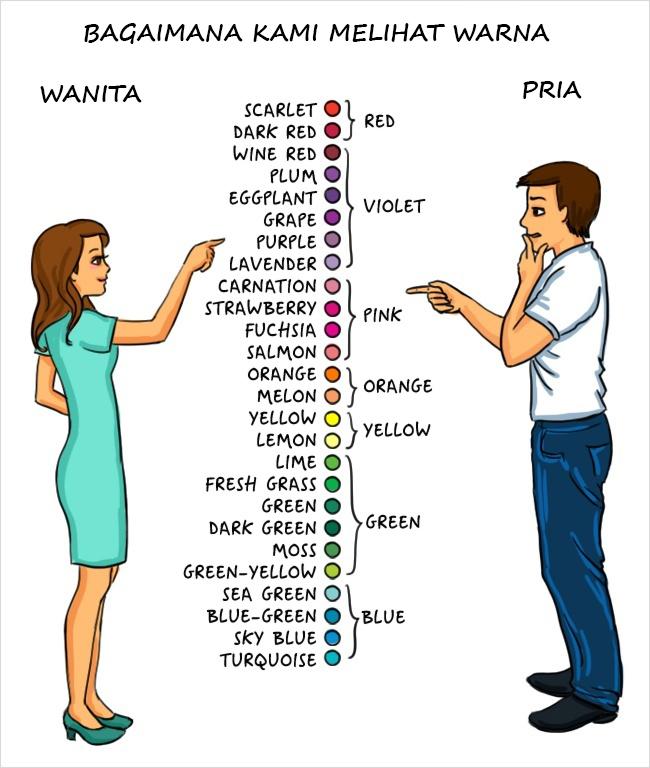 perbedaan pria dan wanita dari cara berpikir